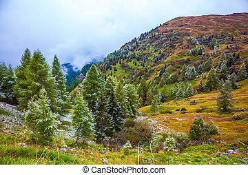 Dolomites. The first snow fell in October. Giau Pass 2236...