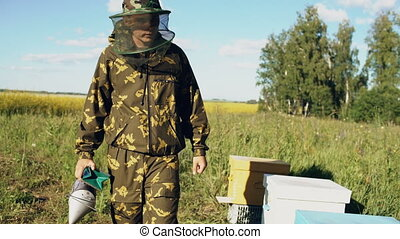 Stedicam shot of beekeeper walking and inspecting his row of...