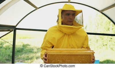 Steadicam shot of beekeeper man walking with wooden frames working in apiary