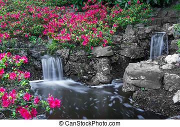 Flower XII - Pink flowers, opened bulbs, little waterfall,...