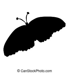 Black silhouette of a moth on a white background. vector...