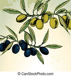 Branches of green and black olives - Vector illustration of...