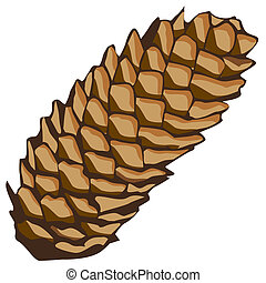 spruce cone - The spruce cone Illustration in vector format