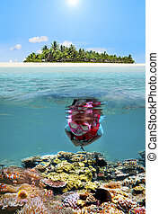 Child snorkelling dive in tropical island resort - Child...