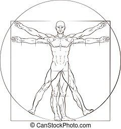 Vitruvian Man - A human figure like Leonard Da Vinci s...