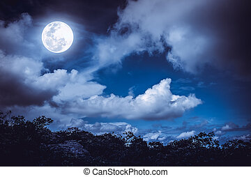 Silhouettes of tree and nighttime sky with clouds, bright...