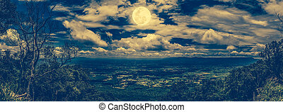Panorama of tree and boulders against nighttime sky with...