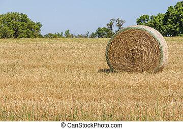Hay pile in a farm field in Porto Covo, Alentejo, Portugal