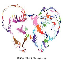 Decorative standing portrait of Dog Pomeranian (Spitz)...