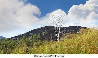 Black mountain near Cooktown Australia - Black mountain near...