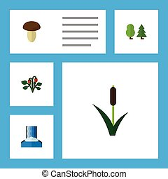 Flat Icon Ecology Set Of Cascade, Cattail, Berry And Other...