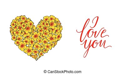 Heart of yellow phlox flowers isolated on white background...