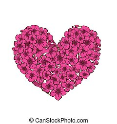 Heart of pink phlox flowers isolated on white background....