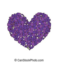 Heart of violet phlox flowers isolated on white background....