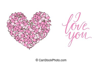 Heart of gently pink phlox flowers isolated on white...