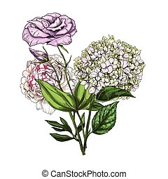 Hand drawn bouquet of phlox, eustoma and peony flowers...