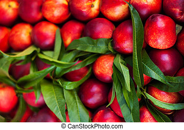 Nectarine Background - Fresh organic Cherry fruits. Frame...