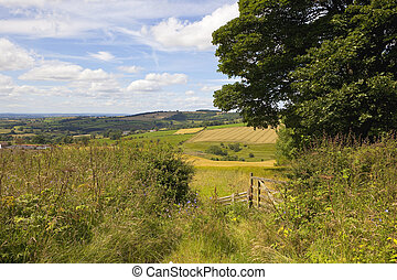 yorkshire wolds vista - a view of the vale of york from a...