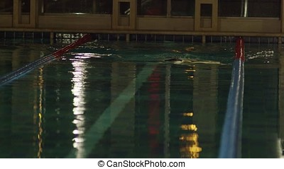 Sportsman swims in a swimming pool. Handsome man swimming in...