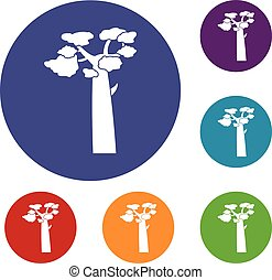 Baobab icons set in flat circle red, blue and green color...