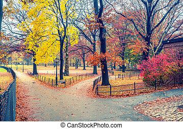 NY Central park at rainy day - Central park at rainy day,...