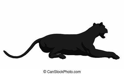 Black Panther Lying Down - Black panther lying down on a...