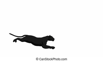 Black Panther Running - Black panther running on a white...