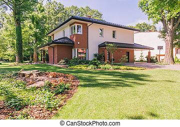 Sunny garden of modern house