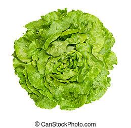 Butterhead lettuce from above over white - Butterhead...