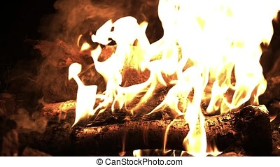 Burning wood in the fire. Camp fire in the night. Fire...