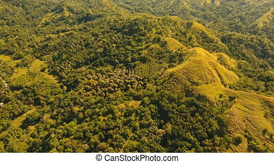 Mountains with tropical forest. Philippines Siargao island....