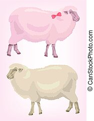two sheep. pink and beige. animal husbandry