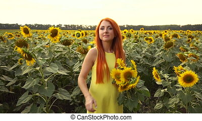 Young woman bobbing up in field of sunflowers, slow motion -...