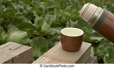 Brown bottle with tea in the garden - Brown bottle with hot...