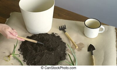 Putting dirt into pot for planting - Female hand filling a...
