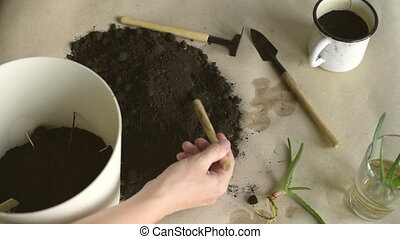 Putting dirt into pot - Female hand filling a pot with dirt...