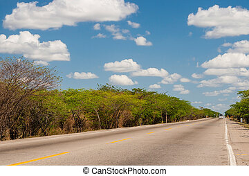 Solitary straight road at La Guajira Colombia