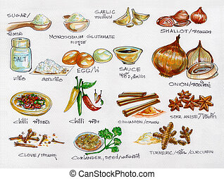 Spices raw materials cooking watercolor painting in paper...