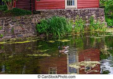 Delaware Canal Towpath and goose, Historic New Hope, PA USA