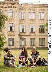 Sentado, estudiantes, conversación, animado, césped, teniendo