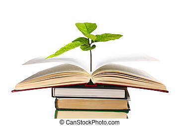 books and plant - books and apple isolated on white...