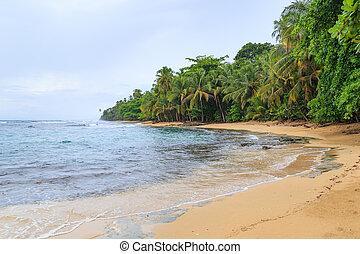 Tropical paradise beach Costa Rica