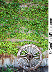 Antique wood cart wheel with green leaves - Antique and...