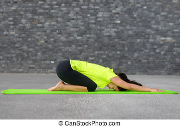 Supple young woman working out with yoga on a mat in front...
