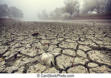 Dried riverbed - Dried watercourse. Dried mud in the...