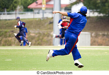 Cricket Game - Cricket game fielder in action