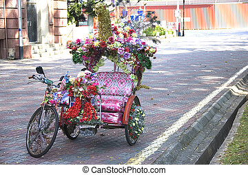 Trishaw - Image of a human powered trishaw against a...