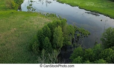 Aerial filming over the swampy terrain and meadows - Aerial...