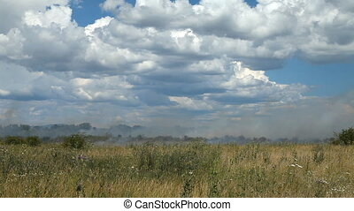 On the agricultural field dry grass burns. Thick smoke....