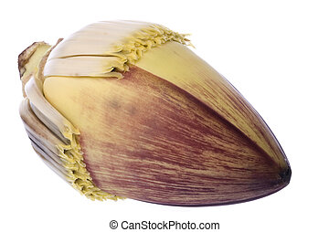 Edible Banana Flower - Isolated image of a fresh edible...
